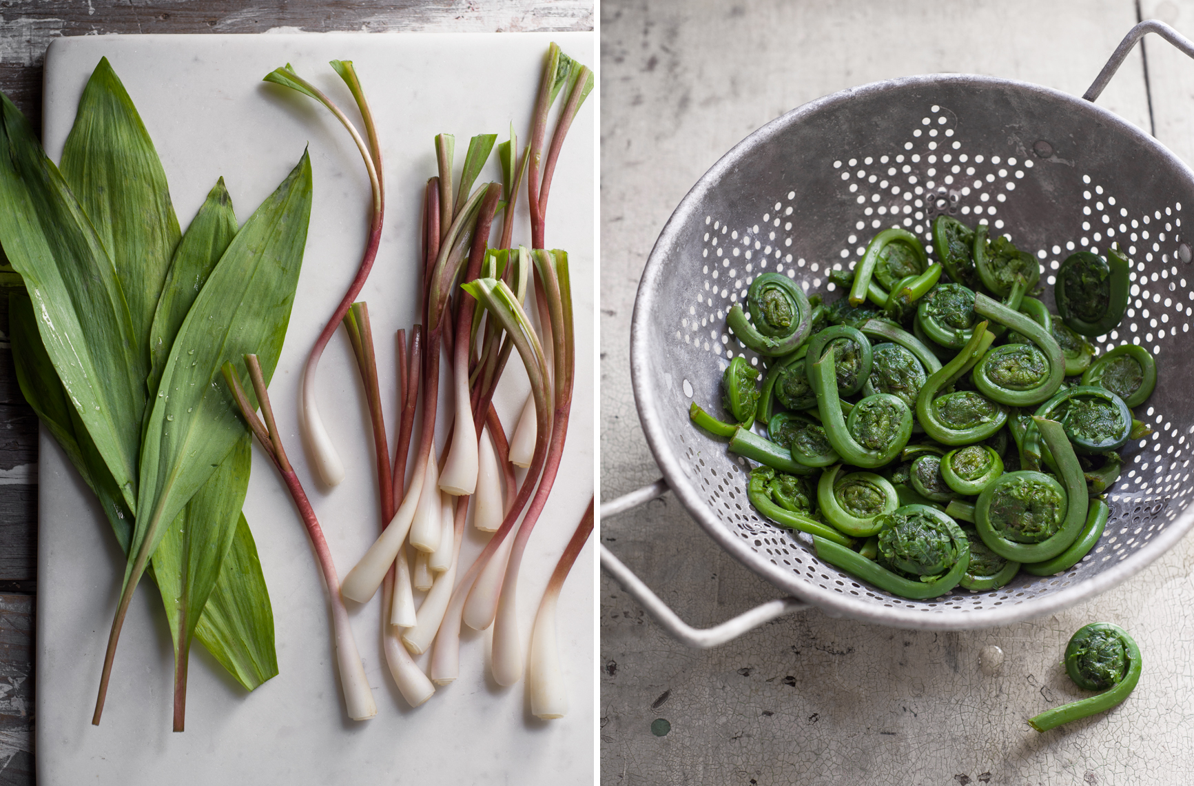 ramps and fiddleheads
